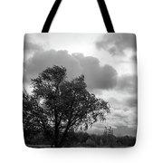 R I P Tote Bag
