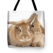 Rabbit And Baby Rabbit Tote Bag