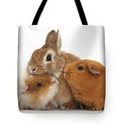 Rabbit And Guinea Pigs Tote Bag