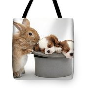 Rabbit And Spaniel Pups Tote Bag