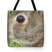 Rabbit Eye Tote Bag