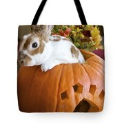 Rabbit Joins The Harvest Tote Bag by Alanna DPhoto
