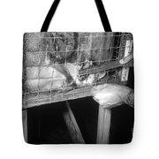 Rabid Fox, 1958 Tote Bag