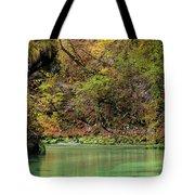 Radovna River In Vintgar Gorge Slovenia Tote Bag