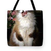 Ragdoll Cat Licks His Lips Tote Bag