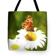Raggedy Butterflly Tote Bag