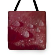 Rain Droplets Magnify The Surface Tote Bag