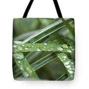 Rain Drops On Grasses Tote Bag
