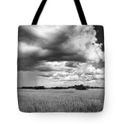 Rain Everglades Tote Bag