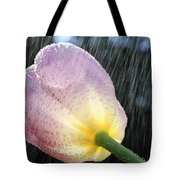 Rain Falling On A Tulip Tote Bag