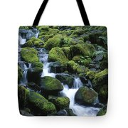 Rain Forest Stream Tote Bag
