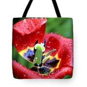Rain Kissed Tote Bag