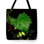 Rain On Ivy Tote Bag