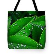 Rain Patterns Tote Bag