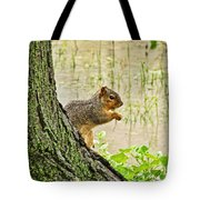 Rain Rain Go Away Tote Bag