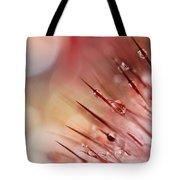 Rainbow Cactus Tote Bag