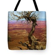 Rainbow Canyon Tote Bag