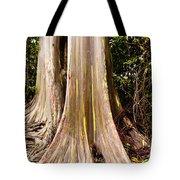 Rainbow Eucalyptus Tote Bag