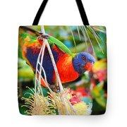 Rainbow Lorikeet 2am-8374 Tote Bag