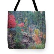 Rainbow Of The Season Tote Bag by Heather Kirk