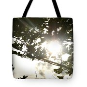 Rainbow Rays Tote Bag