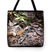 Rainbow Skink Tote Bag