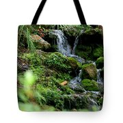 Rainbow Springs Waterfall Tote Bag