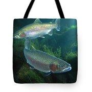 Rainbow Trout Oncorhynchus Mykiss Pair Tote Bag