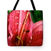 Raindrop Row Tote Bag
