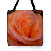 Raindrops On Roses Seven Tote Bag