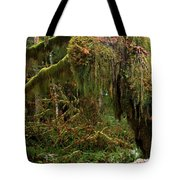 Rainforest Jaws Tote Bag