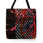 Raining Autumn Leaves Tote Bag by Xueling Zou