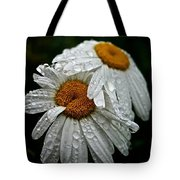 Rainy Day Daisies Tote Bag