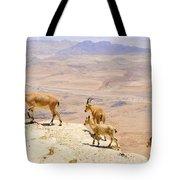 Ramon Crater Negev Israel Tote Bag