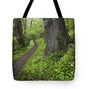Ramsons By Path In Woods, County Louth Tote Bag