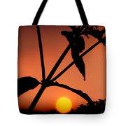 Raphael Sunset 1 Tote Bag