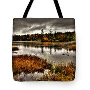 Raquette Lake In Upstate New York Tote Bag