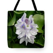 Rare Hawain Water Lilly Tote Bag by Claude McCoy