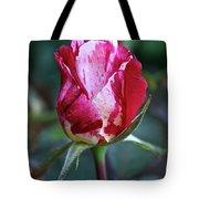Raspberry Swirl Rose Tote Bag