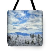 Raven's View In Winter Tote Bag