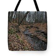 Ravine Creek Tote Bag