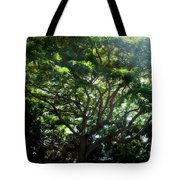 Reach High And Wide Tote Bag