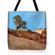 Reaching For The Sun Tote Bag by Bob and Nancy Kendrick