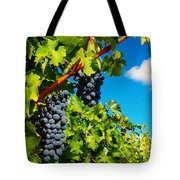 Ready For Harvest  Tote Bag