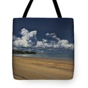 Receding Waters Tote Bag