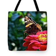 Red Admiral Probocis Tote Bag