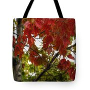 Red And Green Prior X-mas Tote Bag