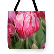 Red And Pink Tulips Tote Bag