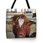 Red And White Cow In A Stable Close Up Tote Bag
