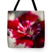 Red And White Dianthus Tote Bag